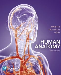 Test Bank for Human Anatomy 9e Martini