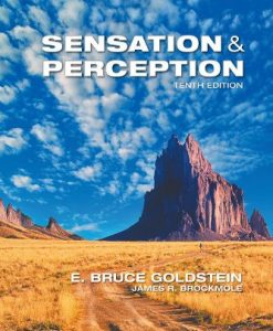 Test Bank for Sensation and Perception 10th Edition E. Bruce Goldstein