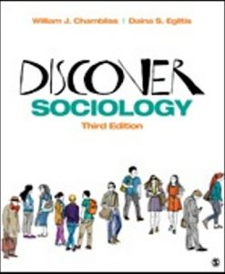 Test Bank (Downloadable Files) for Discover Sociology 3rd Edition Chambliss